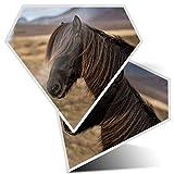 2 pegatinas de diamante de 7,5 cm – Shetland Pony Horse Girl Fun calcomanías para ordenadores portátiles, tabletas, equipaje, chatarra de libros, neveras, regalo fresco #2789