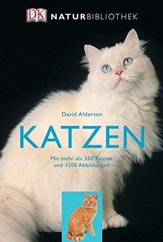 Katzen: Mit mehr als 250 Rassen