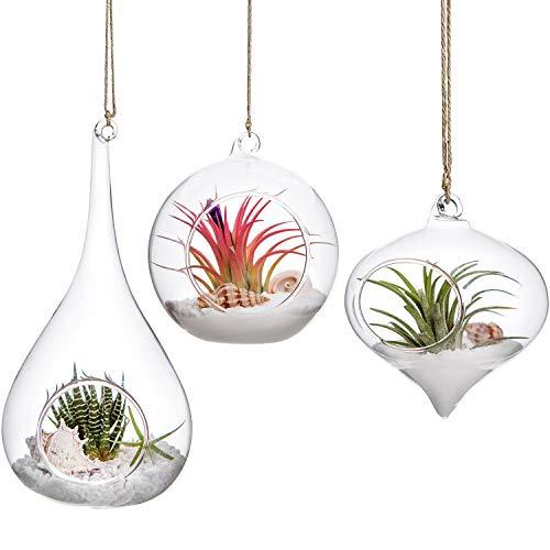 Mkono 3 Pack Glass Hanging Planter Air Fern Holder Terrarium Plants Hanger Vase Home Decoration Gift...