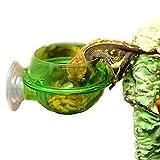 Alimentador De Reptiles, Alimentador De Ventosa, Accesorios De Repisa De Reptiles, Suministros para Gecko, Camaleón