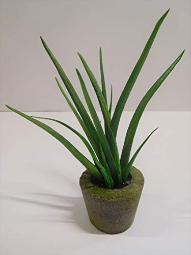 Sanseveria Agave Sukkulente Kunstpflanze Kunst Pflanze Deko Dekopflanze Topfpflanze Zimmerpflanze Kunstblume Blume künstlich unecht Topf grün 22 cm getopft 335646-50 F76