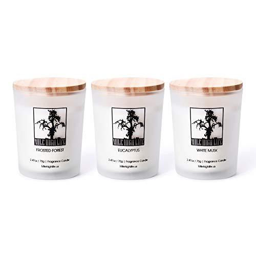 Natural Soy Jar Candle | White Musk | Eucalyptus | Frosted Forest Scent | 3 in 1 Gift Pack | Rich Scented | Hand Poured | Long Lasting Scent | 2.47 Oz X 3