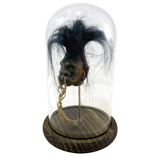 Asylum Zone Shrunken Head with Hair in Bell Jar Voodoo Magic Witchcraft