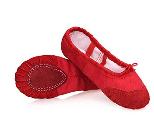 YOGLY Zapatos de Baile para Niñas Adulto Ballet Danza Suelas Blandas Profesional Bailarina Zapatos Transpirables