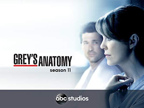 Grey's Anatomy (Yr 11 2014/2015)