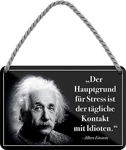 """Blechschilder Lustiger Albert Einstein Spruch Zitat """"Der Hauptgrund für Stress ist der tägliche Kontakt mit Idioten"""" Deko Hängeschild Schild Geschenk zum Geburtstag oder Weihnachten 18x12 cm"""