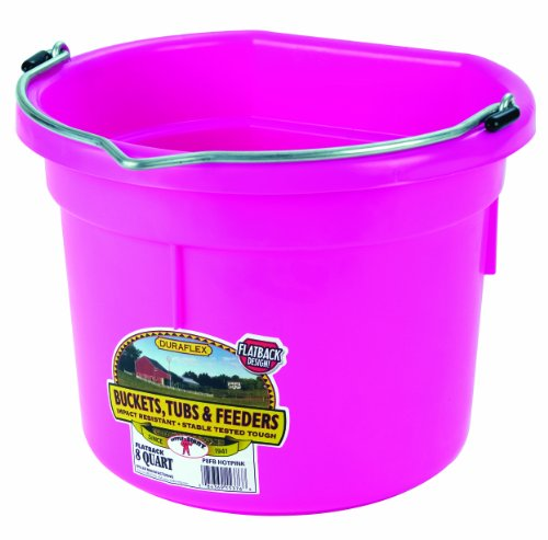 Little Giant Plastic Animal Feed Bucket (Hot Pink) Flat Back Plastic Feed Bucket with Metal Handle (8 Quarts / 2 Gallons) (Item No. P8FBHOTPINK)