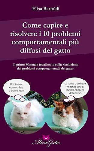 Come capire e risolvere i 10 problemi comportamentali più comuni del gatto