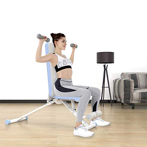 Rindasr strength training equipment,weights,Adjustable Weight Bench-Utility Bench for Full Body Workout; Multi Purpose Decline Fitness Bench Roman Chair; Sit Up All-in-One Hyper Back Extension Exercis