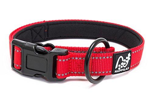 Happilax Halsband für kleine Hunde gepolstert, größen-verstellbar und reflektierend mit Zugstopp, 35-40 cm