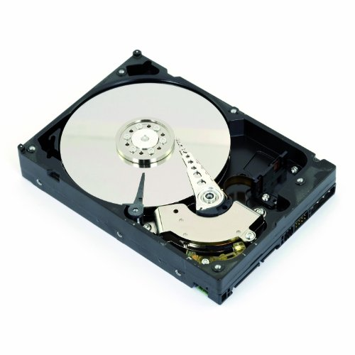 Intenso interne HDD 5TB 3,5