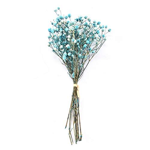 WHK Gypsophila - Ramo de Flores Artificiales, Flor Seca Gypsophila Foto de Fondo de Boda Decoración del hogar(Blue)