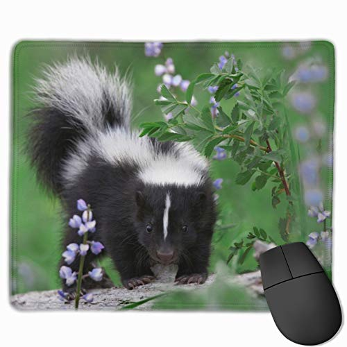Baby Skunks Gaming Mouse Pad Custom Rectangle Mousepad Computer Gaming Mouse Mat Non-Slip Rubber for Pc and Laptop