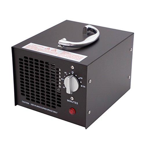 ECO-WORTHY 3.5 G 220 V Generador De Ozono Industriales - Purificador De Aire Ozono Purificador De Aire