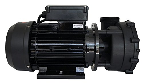 LX WP200-II Massagepumpe Whirlpool, 2-stufig 2 PS Whirlpoolpumpe