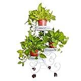 Fuluomei FLM Pflanzenregal mit Rollen, Metall, 3Ebenen für Kräuter und Blumen, Weiß