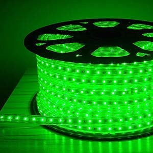 Errol LED Strip Rope Light,Water Proof,Decorative led Light with Adapter (4 Meter, Green)