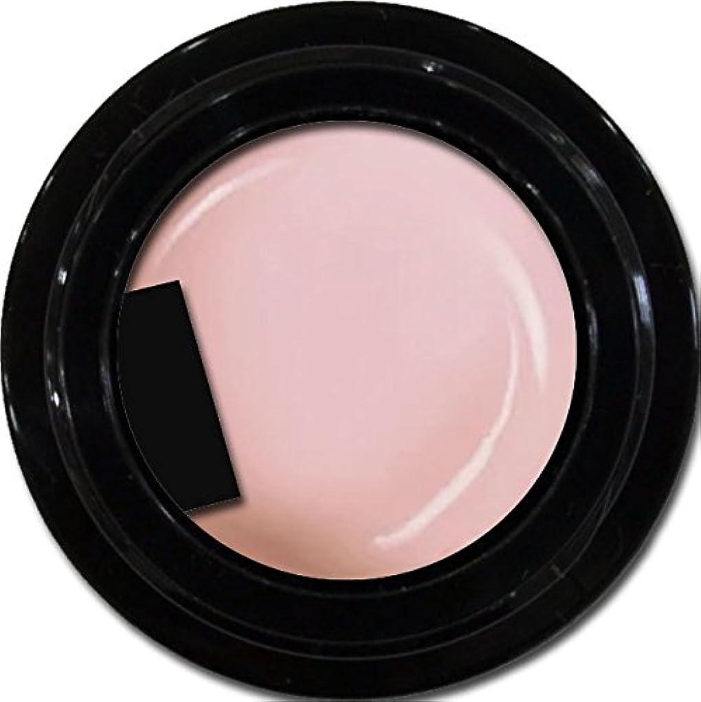 圧倒するキャプション消毒するカラージェル enchant color gel M203 MarshmallowPink 3g/ マットカラージェル M203マシュマロピンク 3グラム