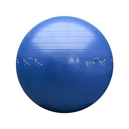 YSCYLY Pelota Suiza,Espesar la Bola de la Aptitud 55cm / 65cm / 75cm,para Equilibrio Y Entrenamiento