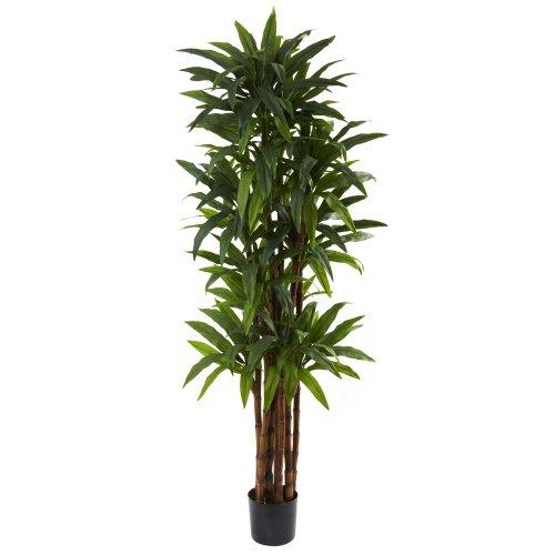 Nearly Natural 5403 Dracaena Tree, 6.5-Feet, Green,84″ x 8″ x 8″