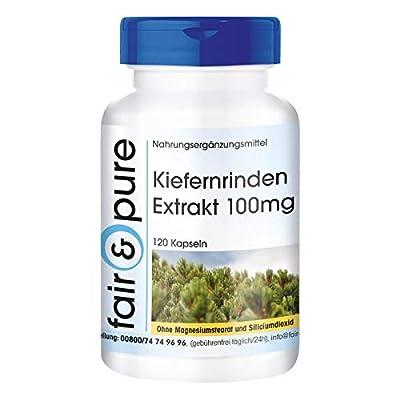 Pine bark Extract Capsules - 100mg - 95% proanthocyanidins - Vegan - 120 Capsules
