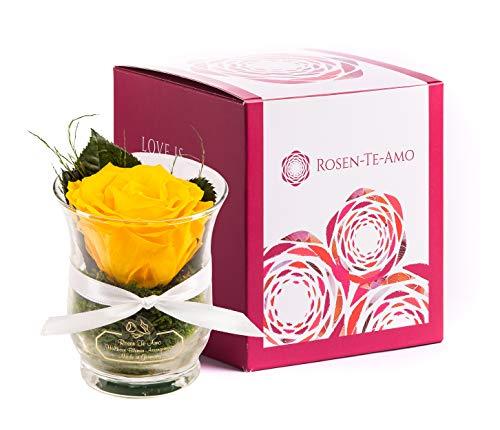 Rosen-Te-Amo, duftende Premium konservierte ewige Rose gelb in Vase handgefertigt mit echtem Bindegrün in feiner Geschenk-Box (neu). Infinity Rosen: Geschenke für Frauen & Deko Wohn-Zimmer