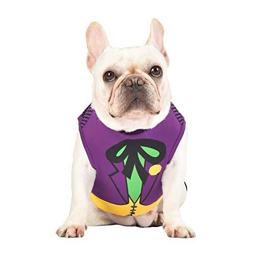 DC Comics Joker Dog Costume, Extra-Small (XS)   Superhero Costume for Dogs   Purple Dog Halloween Costumes for Small Dogs, Cute Joker Costume   See Sizing Chart for Details