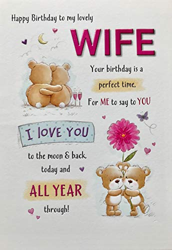 Cute Birthday Card Wife - 9 x 6 inches - Piccadilly Greetings