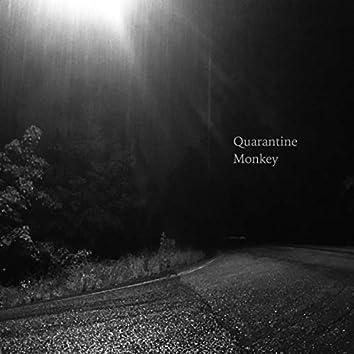 Quarantine Monkey