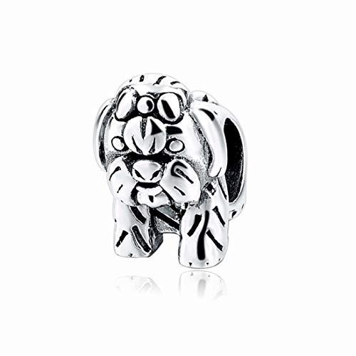 EvesCity Bolenvi - Abalorio de plata de ley 925 con diseño de perro Shih Tzu Shihtzu Shihtzu Shihtzu Shihtzu Shihtzu de perro