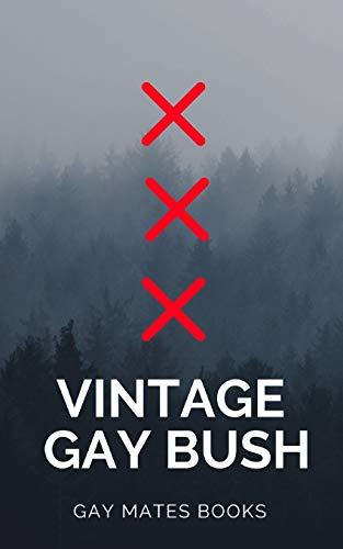 Vintage Gay Books