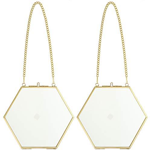 SUMTREE 2 Pcs Hexagon Bilderrahmen aus Metall und Glas,Hängende Glas Fotorahmen,Geometrische Ornament Pflanze Probe Clip,Für gepresste Blumen,Fotos(Golden,8cm)