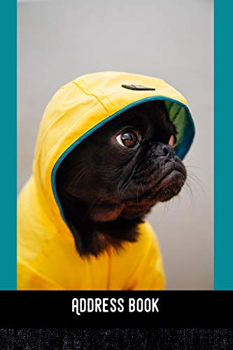 Address Book: Pug Dog in yellow - Phone & contact book -All contacts at a glance - 120 pages in alphabetical order / size 6x9  (A5)