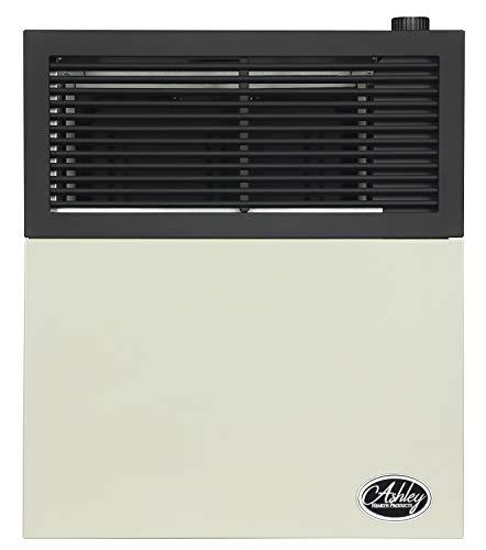Ashley Hearth DVAG11N 11,000 BTU Direct Vent Natural Gas Heater, Cream