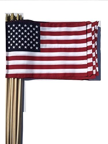 WINDSTRONG Lot of -12-12x18 Inch US American Hand Held Stick Flags Sewn Edges with Spear Tip (Double Sided) Made in The USA