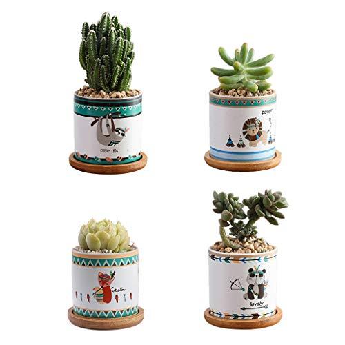 Joocyee Maceta suculenta de cerámica, Maceta de Cactus con Hermoso diseño, Maceta Linda, Maceta suculenta de Animal de Dibujos Animados de Zorro león Perezoso Panda, como se Muestra