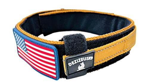 Diezel Pet Products Dog Collar with Control Handle Quick Release Metal Buckle Heavy Duty Military Style 2' Width Nylon with USA Flag for Handling and Training Large Canine K9 (729C-TANTAC)