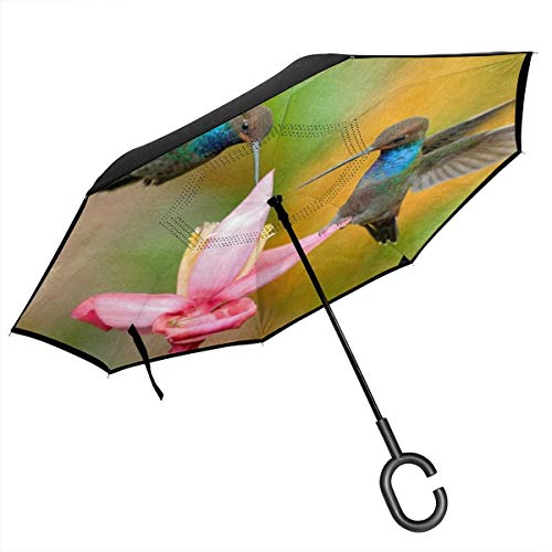 Hummingbird Bird With Flower Cars Reverse Umbrella Windproof UV Proof Travel Outdoor With C-Shaped Handle