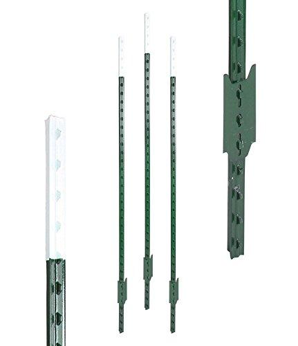 Eider Landgeräte GmbH T-Pfosten 10 Stück 182 cm, grün lackiert l Hochwertige Qualität - nahezu unverwüstlich