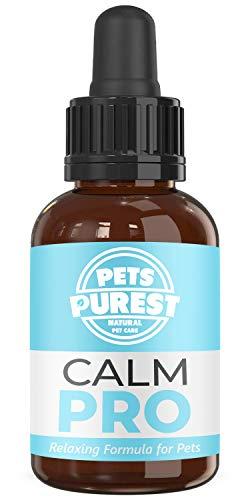 Pets Purest Supplément calmant Normal d'aide de 100% pour des Chiens, des Chats et des Animaux familiers. Réduit l'anxiété et Le Stress chez Vos Animaux de Compagnie (50ml) (UK)