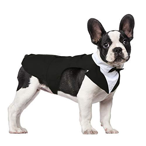 Kuoser Smokinganzug für Kleine und Mittelgroße Hunde, Haustierkleidung, Welpen-Shirt mit Abnehmbarer Schwarzer Fliege, Hundekostüm Formelles Outfit für Hochzeit Party Festival