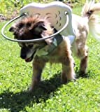 Muffin's Halo Blind Dog Harness Guide...