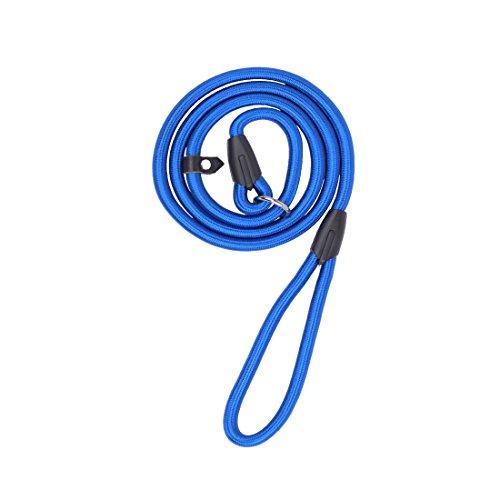 FengDing Correa para Perros de Nylon, Cuerda de Plomo, Correa para Mascotas, Adecuada para Mascotas Peque?as, Medianas y Grandes, Talla L en Azul