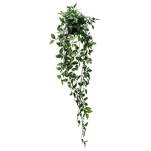 IKEA 403.495.31 Fejka Artificial Potted Plant, Indoor/Outdoor, Hanging
