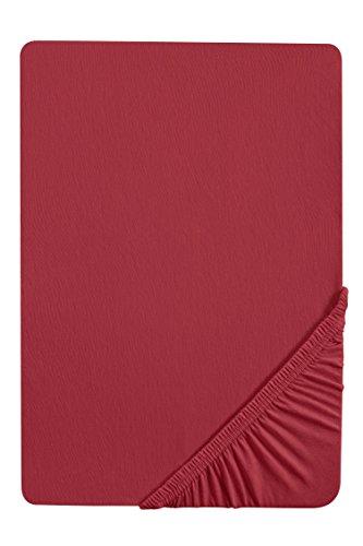 biberna 0077144 Feinjersey Spannbetttuch (Matratzenhöhe max. 22 cm) (Baumwolle) 180x200 cm -> 200x200cm, rost