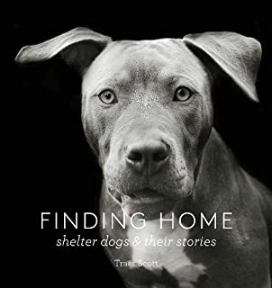 Finding Home: Shelter Dogs and Their Stories (A photographic tribute to rescue dogs)