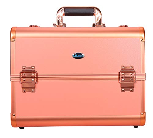 Lanshine Portable Beauty Cosmetic Box 2 Tiers Makeup Nail Jewelry Case 30x26x20cm (Rose Gold)