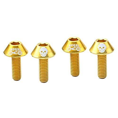 4 x Fahrrad Trinkflaschenhalter Schrauben - Flaschenhalter Schraubenset - Gold