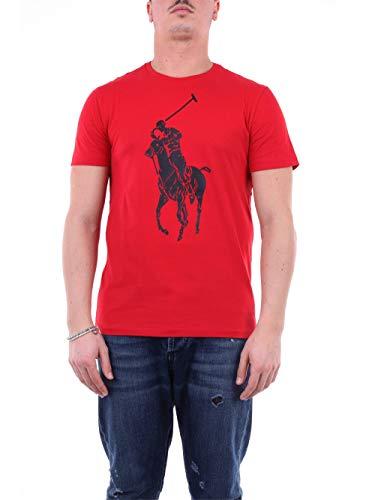 Polo Ralph Lauren Camiseta Big Pony Player 796092-004 (Large)