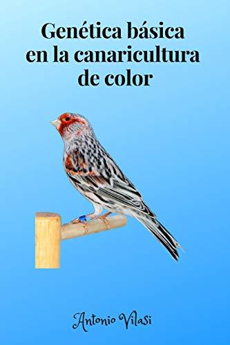 genética básica en la canaricultura de color